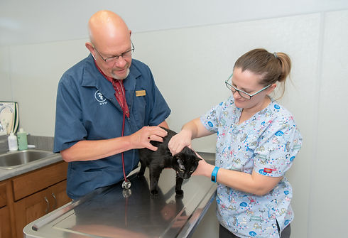 South Central Vet Clinic - 2019-130.jpg