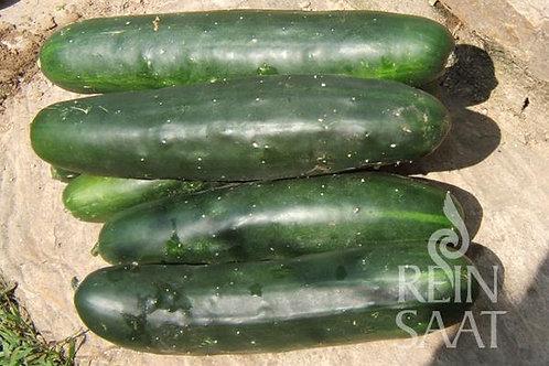 "Salatgurke ""Marketmore"" Bio Demeter"