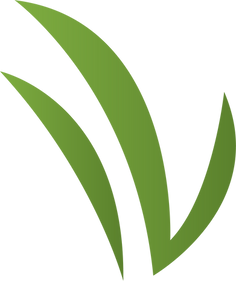 Kingsbury Lawn Care | Lawn Overseeding | This image is of a grass leaf icon