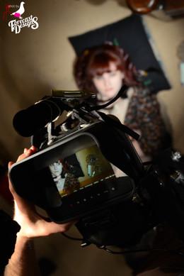 Filming Night Owls
