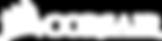 Corsair_logo_1A_white_800px.png