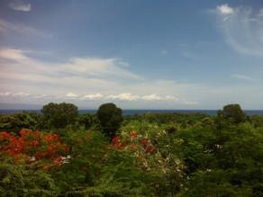 A Look at COTA's Trip To Haiti-Ryan's Post!