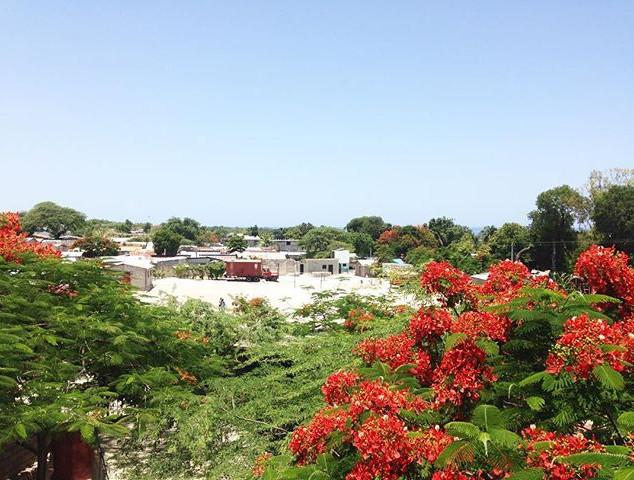 Konbit Haiti