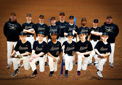 MS BAseball Pic.png