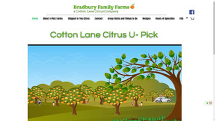 Cotton Lane Citrus
