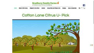 Cotton Lane Citrus