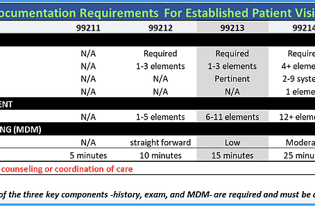 Evaluation and Management Physician Encounter Documentation Requirements