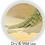 Thumbnail: Plastic Zero Dust Floor Broom/Jhadu, 1pc