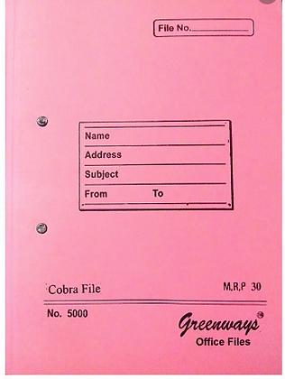 Cardboard File 1pc