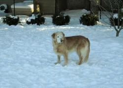 Christi enjoying the snow at 10