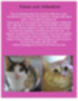 Fiona and Valentino pdf jpeg.jpeg