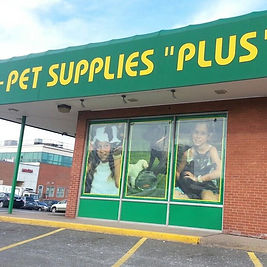 Pet Supplies Plus, West Hartford CT