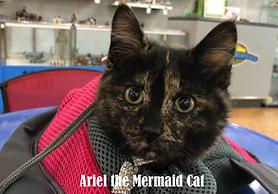 Ariel-Mermaid.png