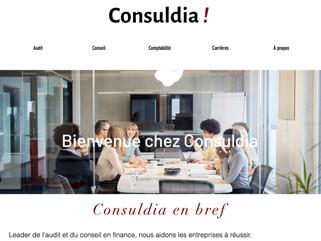 Création d'un site vitrine pour l'entreprise Consuldia