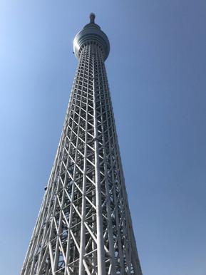 Wishbone Ash Japan Tour Mark Abrahams