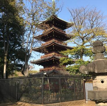 Japan with Wishbone Ash 2019