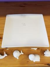 Rimless square dinner plate