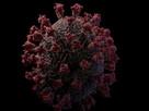 Modelo do Coronavírus mais próximo do real é criado em 3D.