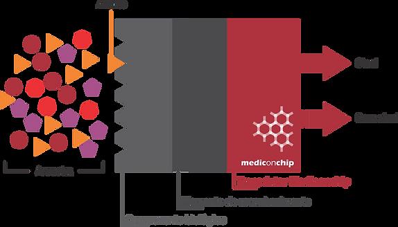 Funcionamento biossensor Mediconchip