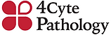 4cyte.png