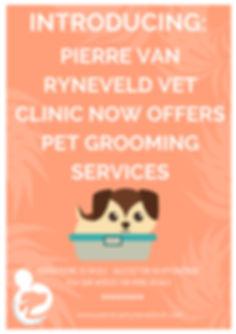 introducing grooming.jpg