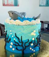 #59 - Shark Theme