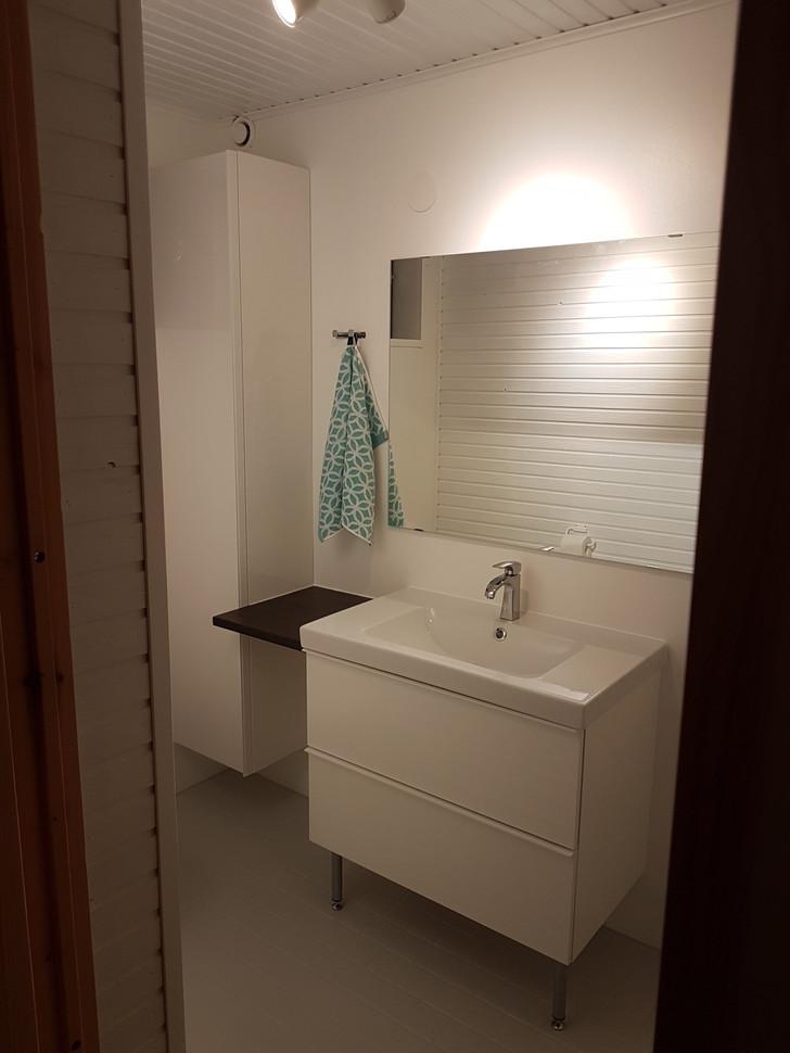 Pienen wc:n pintaremontti