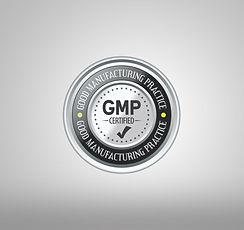 GMP logo.jpg