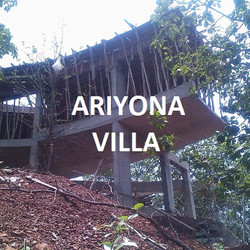 Ariyona
