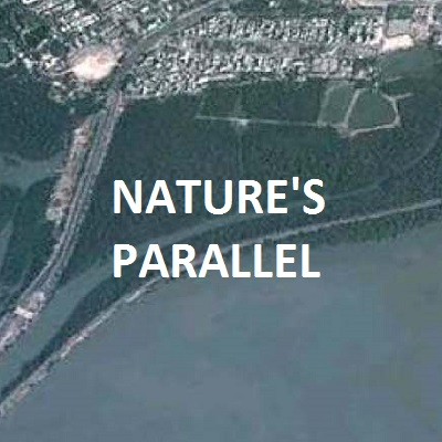 Natures Parallel