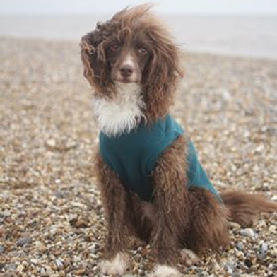 Water repellent fleece tank from £14