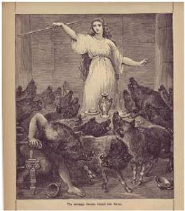Circe tinha por hábito transformar os homens em porcos