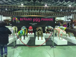 Bísaro Pig Parade