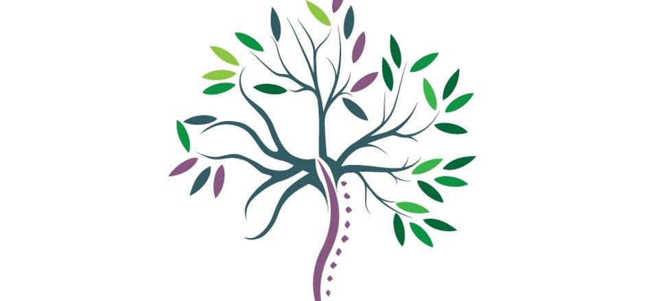 Seasons of Life Tree Logo