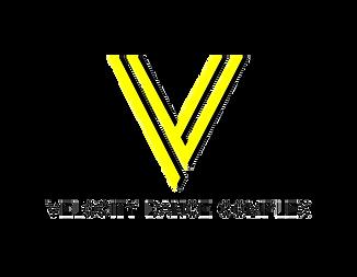 VDC_V-w-Type_Colour.png