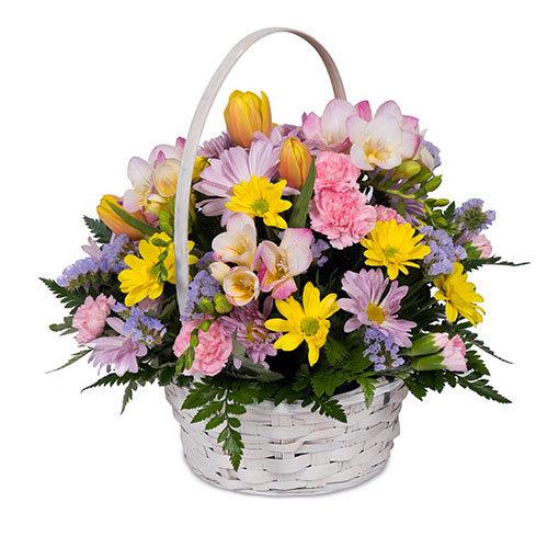 Appealing Seasonal Flowers