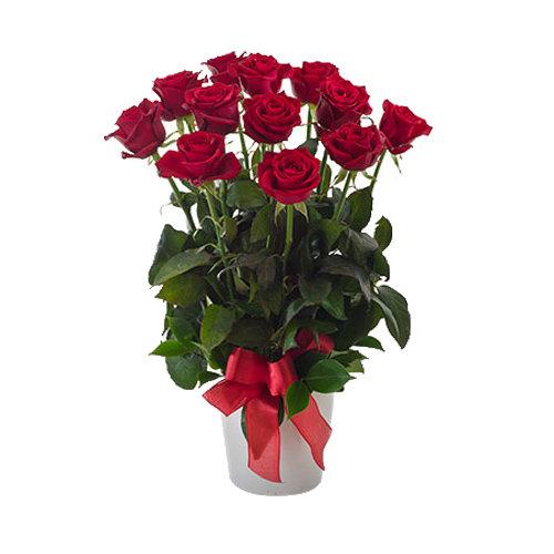 Phenomenal Roses Arrangement