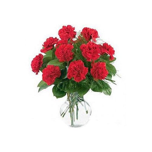 Striking 12 Red Carnations