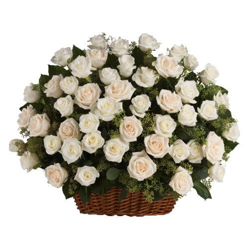 Remarkable White Roses