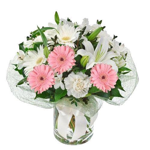Pink & White Gerberas
