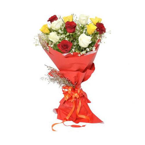 Jovial Mix Color Roses