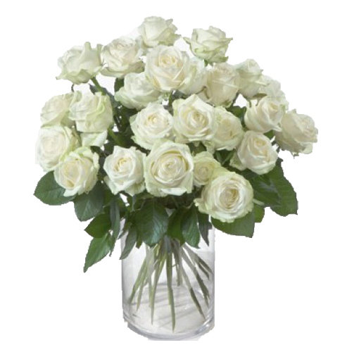 Cherishable White Roses Vase