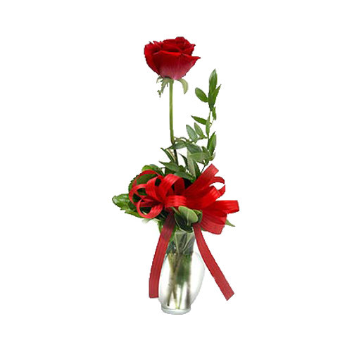 The Beautiful Vase