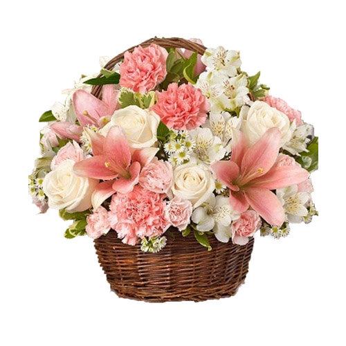 Fascinating Flowers