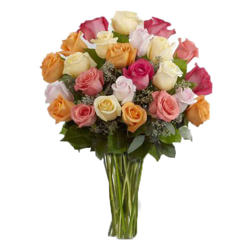 Enduring Mixed Color Roses