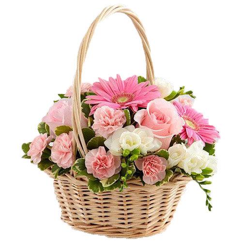 Awe-Inspiring Flowers