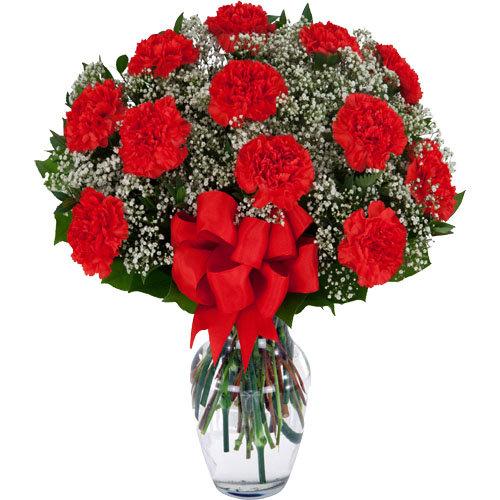 Eye Pleasing Red Carnations
