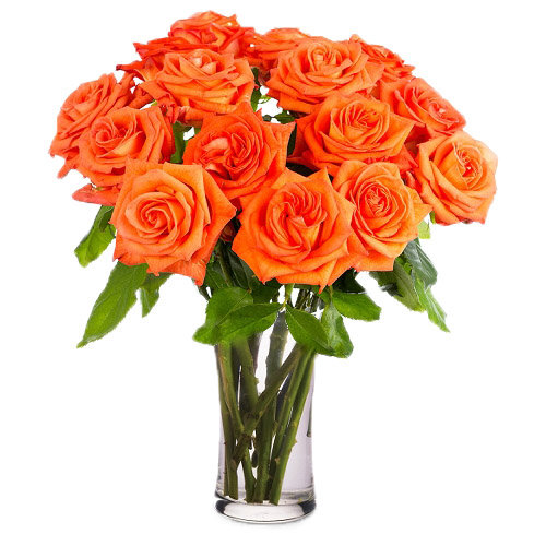 Sparkling Orange Roses
