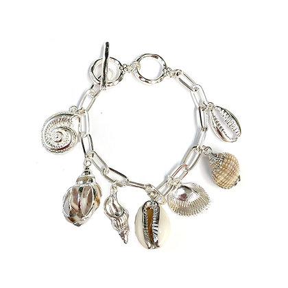 Sea Shell Charms
