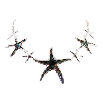Abalone Starfish